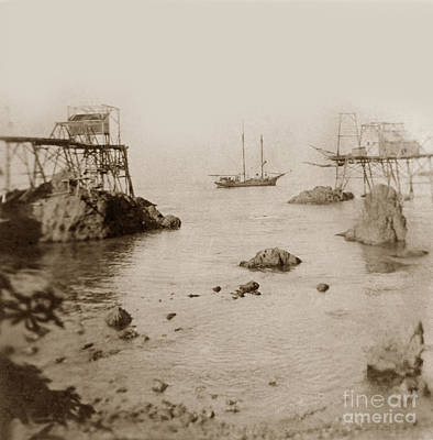 Photograph - Unidentified Two Masted Schooner At Westport  Landing by California Views Archives Mr Pat Hathaway Archives