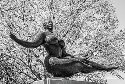 Photograph - University Of Nebraska Floating Figuresculpture by University Icons