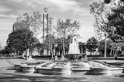Photograph - University Of Southern California Alumni Park by University Icons