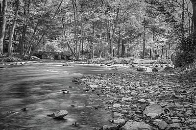 Photograph - Unknown Stream by Dan Urban