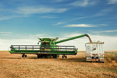 Photograph - Unloading Chickpeas by Todd Klassy