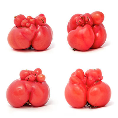 Photograph - Unusually Shaped Tomatoes by Fabrizio Troiani