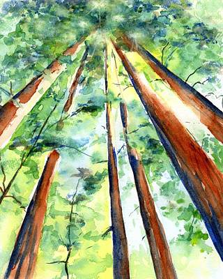 Painting - Up Through The Redwoods by CarlinArt Watercolor