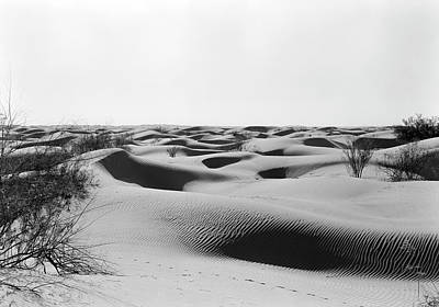Photograph - Usa, California, Death Valley, Sand by Superstock
