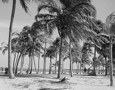 Photograph - Usa, Florida, Key Biscayne, Crandon by Superstock