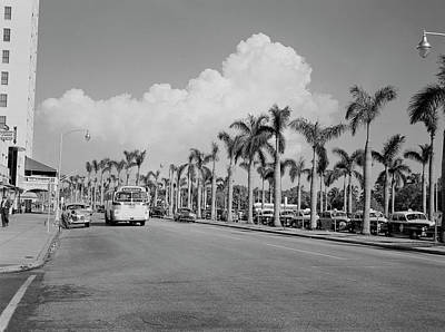 Photograph - Usa, Florida, Miami, Street Lined With by Superstock