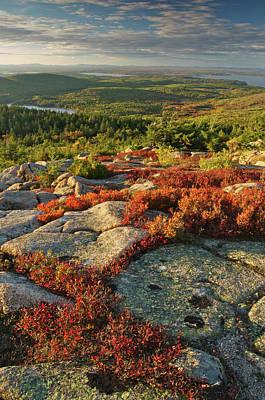 Photograph - Usa, Maine, Acadia National Park Scenic by Tony Sweet