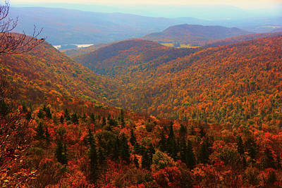 Photograph - Valley Below Mount Greylock by Raymond Salani III