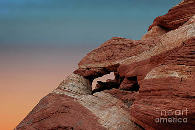 Photograph - Valley Of Fire Beauty by Sandra Bronstein