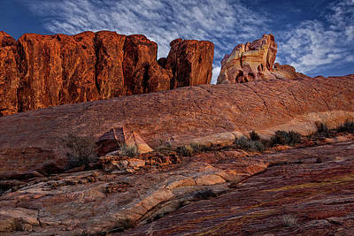 Photograph - Valley Of Fire Elephant Rock by Susan Candelario