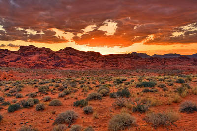 Aloha For Days - Valley ON Fire by James Anderson