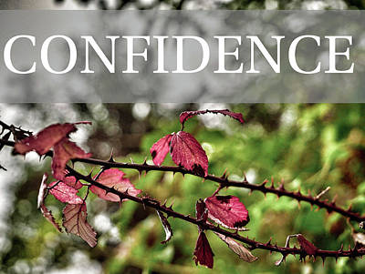 Photograph - Values - Confidence by Julia Massold