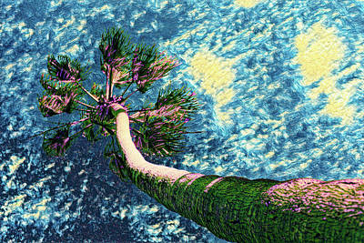 Digital Art - Van Goghs Palm Tree by Scott Campbell