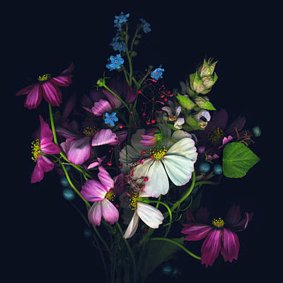 Photograph - Variety Of Flowers Against Black by John Grant