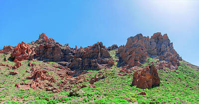 Photograph - Vegetation Surrounding Red Lava Rocks by Sun Travels