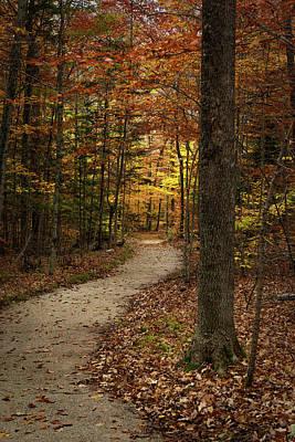 Photograph - Vertical Trail by David Heilman