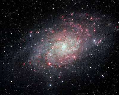 Photograph - Very Detailed View Of The Triangulum Galaxy by Adam Romanowicz