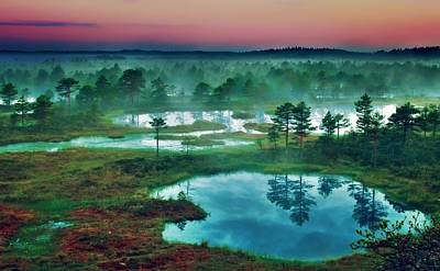 Photograph - Vibrant Landscape by Dawn Van Doorn