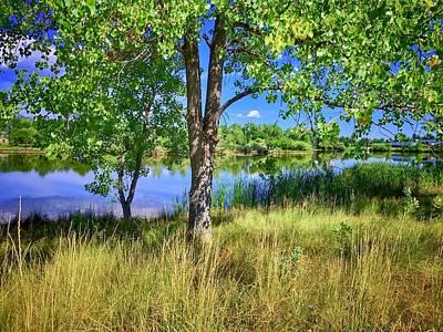 Photograph - Viele Lake 4 by Dan Miller