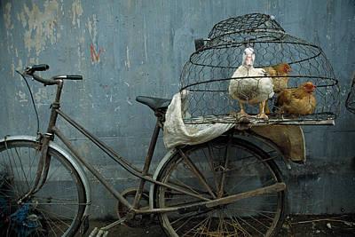 Photograph - Vietnam, Hanoi, Fowl Market Near Long by Macduff Everton