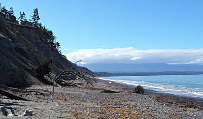 Photograph - View From Dungeness Spit by Michele Myers
