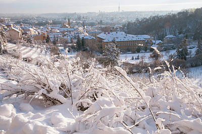 Photograph - View From Petrin Hill To Snowy Prague by Jenny Rainbow