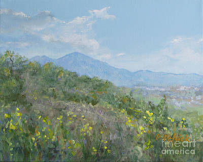 Painting - View of Saddleback from Rancho Santa Margarita by Pamela Schick