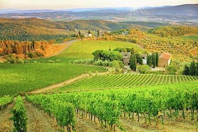 Field Photograph - Vineyard Sunset Landscape From Tuscany by Csondy