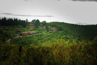Photograph - Vineyards Of Chianti by Mark Duehmig
