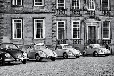 Photograph - Vintage Beetles by Tim Gainey