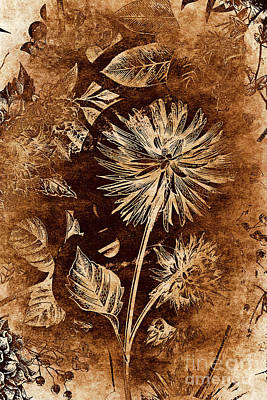 Floral Arrangement Photograph - Vintage Blossom by Jorgo Photography - Wall Art Gallery