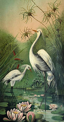Painting - Vintage Painting Of Egrets by Marilyn Hunt