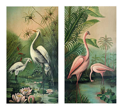 Painting - Vintage Paintings Egrets And Flamingos 1 by Marilyn Hunt