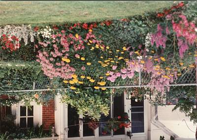 Painting - Vintage Photo Of Flowers And Garden 1970s - 1980s - 075 by Celestial Images