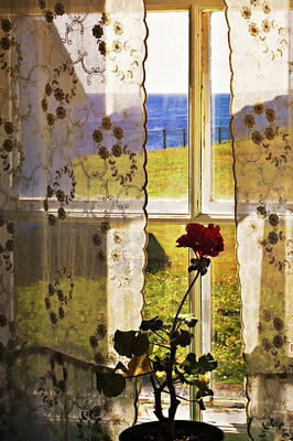 Photograph - Looking Out Grandmas Window by Tatiana Travelways