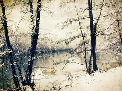 Photograph - Vintage Winter  by Jessica Jenney