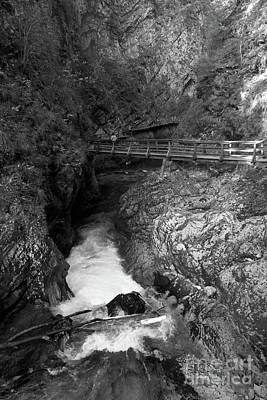 Photograph - Vintgar Gorge  by Phil Banks