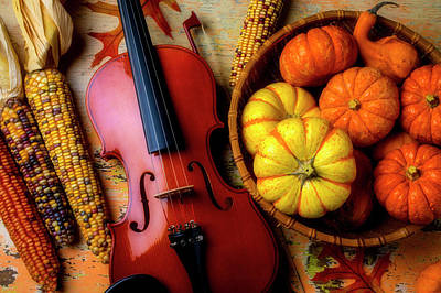 Photograph - Violin And Autumn Pumpkins by Garry Gay
