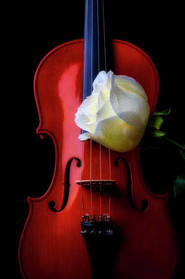 Photograph - Violin And White Rose by Garry Gay