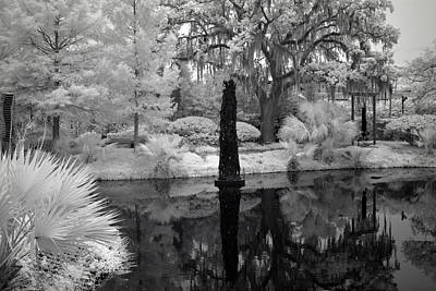 Bath Time Rights Managed Images - Violins NOMA Besthoff Sculpture Garden City Park New Orleans 2019 in Infrared Royalty-Free Image by Sean Gautreaux