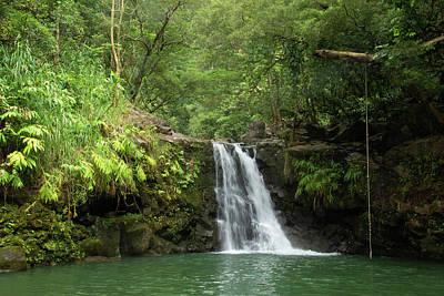 Photograph - Waikamoi Falls by Marie Leslie