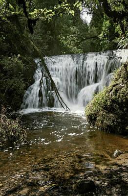 Photograph - Waipohatu Falls Catlins New Zealand by Joan Carroll
