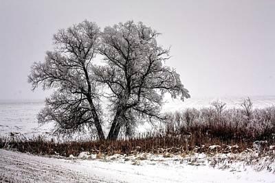 Photograph - Waiting by David Matthews