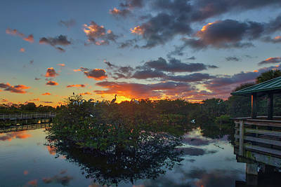 Photograph - Wakodahatchee Wetlands Birds And Sunrise by Juergen Roth