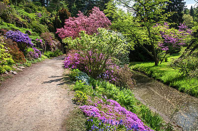 Photograph - Walk In Spring Eden. Colorful Path 1 by Jenny Rainbow