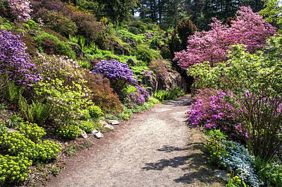 Photograph - Walk In Spring Eden. Colorful Path 2 by Jenny Rainbow