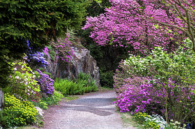Photograph - Walk In Spring Eden by Jenny Rainbow