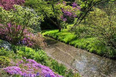 Photograph - Walk In Spring Eden. Tiny Stream 1 by Jenny Rainbow