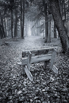 Photograph - Walk To Bench by David Heilman