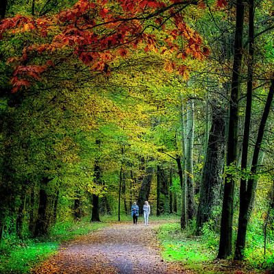 Photograph - Walking Among Fall Colors by Roberto Pagani
